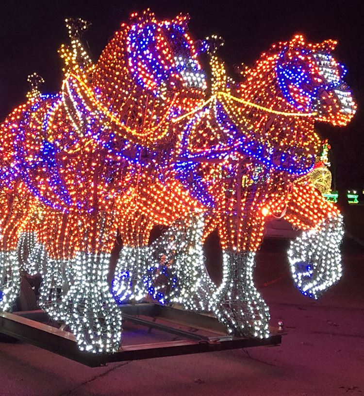 Clydesdales lighted display